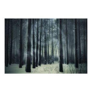 Vlies Fototapete Mystischer Märchenwald Motiv