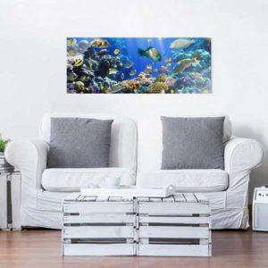 Glasbild Unterwasser Rief Sofa