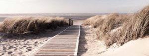 Glasbild Strand Dünen Morning Walk