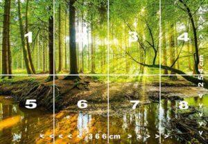 Fototapete strahlender Wald einzelnen Bahnen