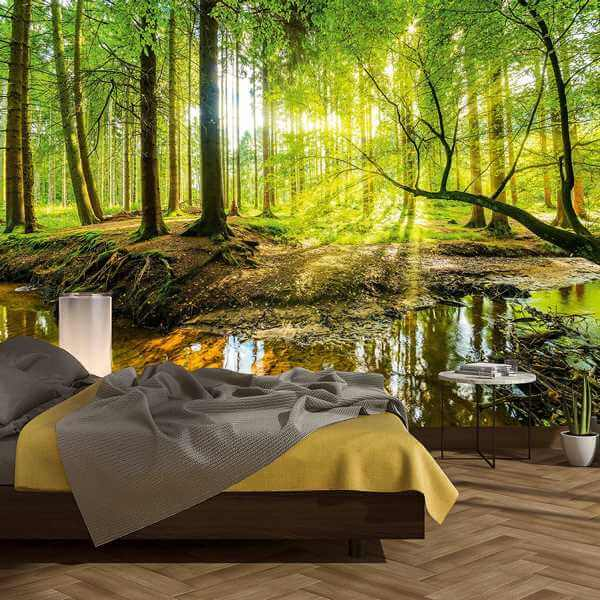 fototapete strahlender wald brilantes naturmotiv. Black Bedroom Furniture Sets. Home Design Ideas